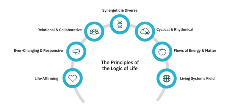 the principles of the logic of life